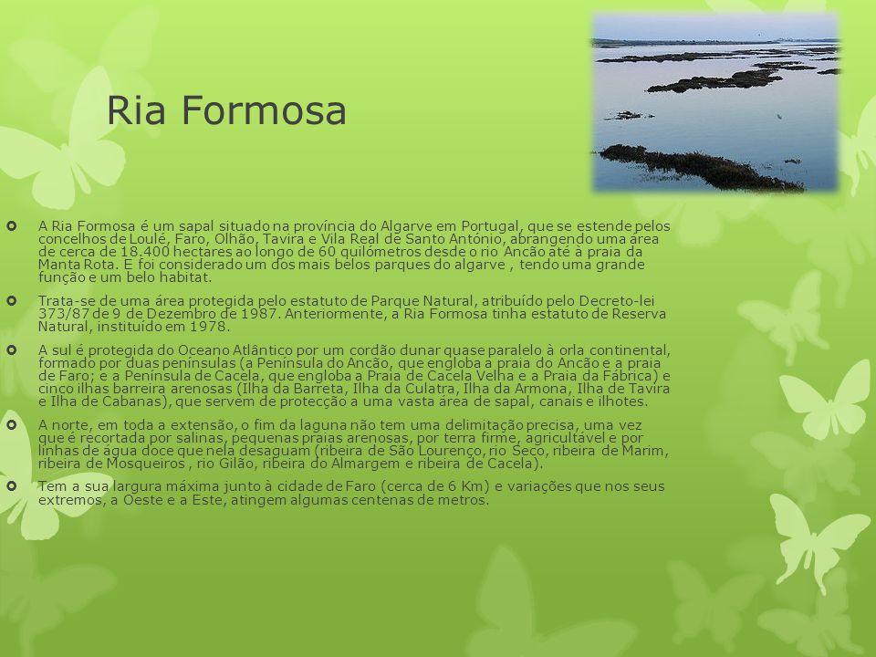 Ria Formosa  A Ria Formosa é um sapal situado na província do Algarve em Portugal, que se estende pelos concelhos de Loulé, Faro, Olhão, Tavira e Vil