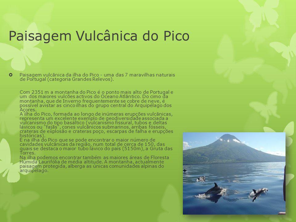 Paisagem Vulcânica do Pico  Paisagem vulcânica da ilha do Pico - uma das 7 maravilhas naturais de Portugal (categoria Grandes Relevos). Com 2351 m a