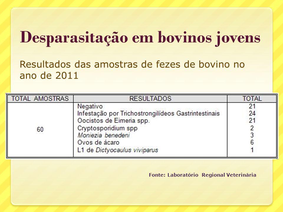 Desparasitação em bovinos jovens Fonte: Laboratório Regional Veterinária Resultados das amostras de fezes de bovino no ano de 2011