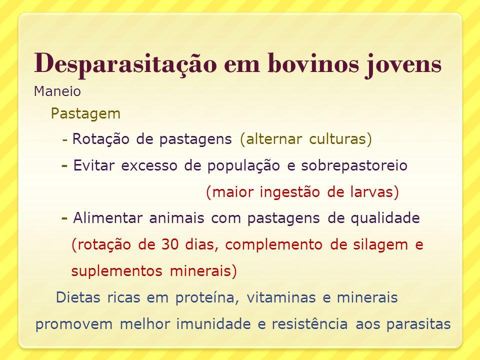 Desparasitação em bovinos jovens Maneio Pastagem - Rotação de pastagens (alternar culturas) - Evitar excesso de população e sobrepastoreio (maior inge