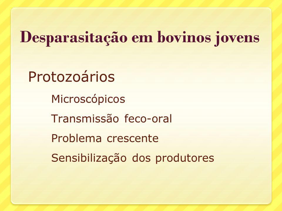 Desparasitação em bovinos jovens Protozoários mais importantes: Coccidias (Eimeria spp.) Cryptosporidium (C.
