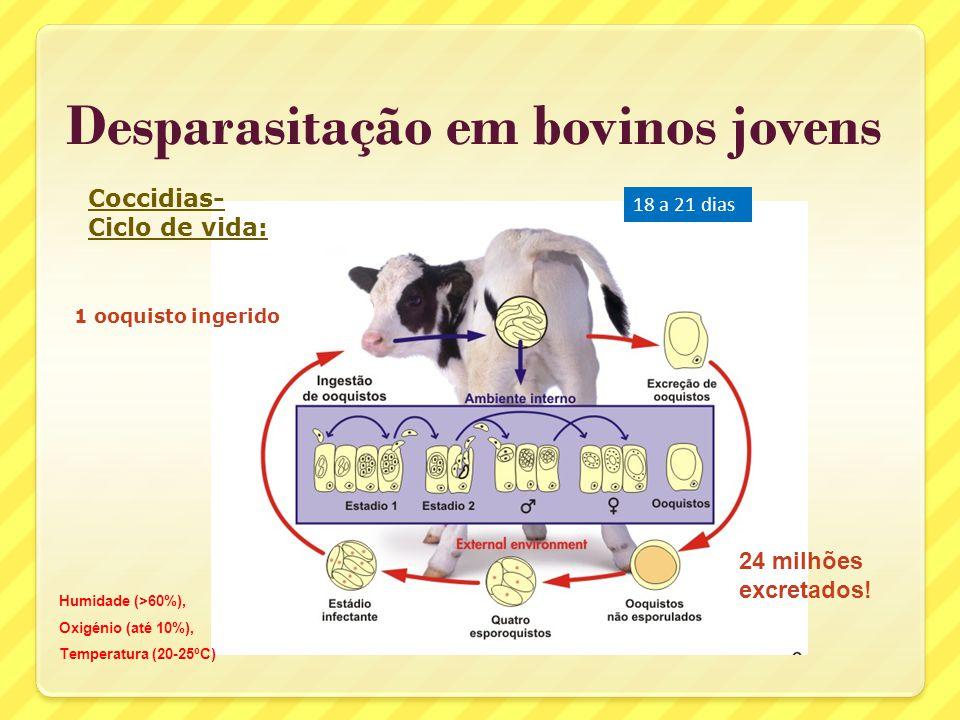 Desparasitação em bovinos jovens Protocolos em vitelos 1º mês Toltrazuril primeira semana (coccídias) Endoparasiticida a partir das 2 semanas repetir 3 a 4 semanas depois (se na pastagem) (vacas leiteiras - desparasitar no periparto)