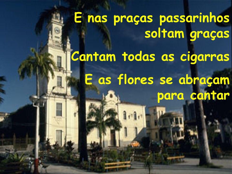 E nas praças passarinhos soltam graças Cantam todas as cigarras E as flores se abraçam para cantar
