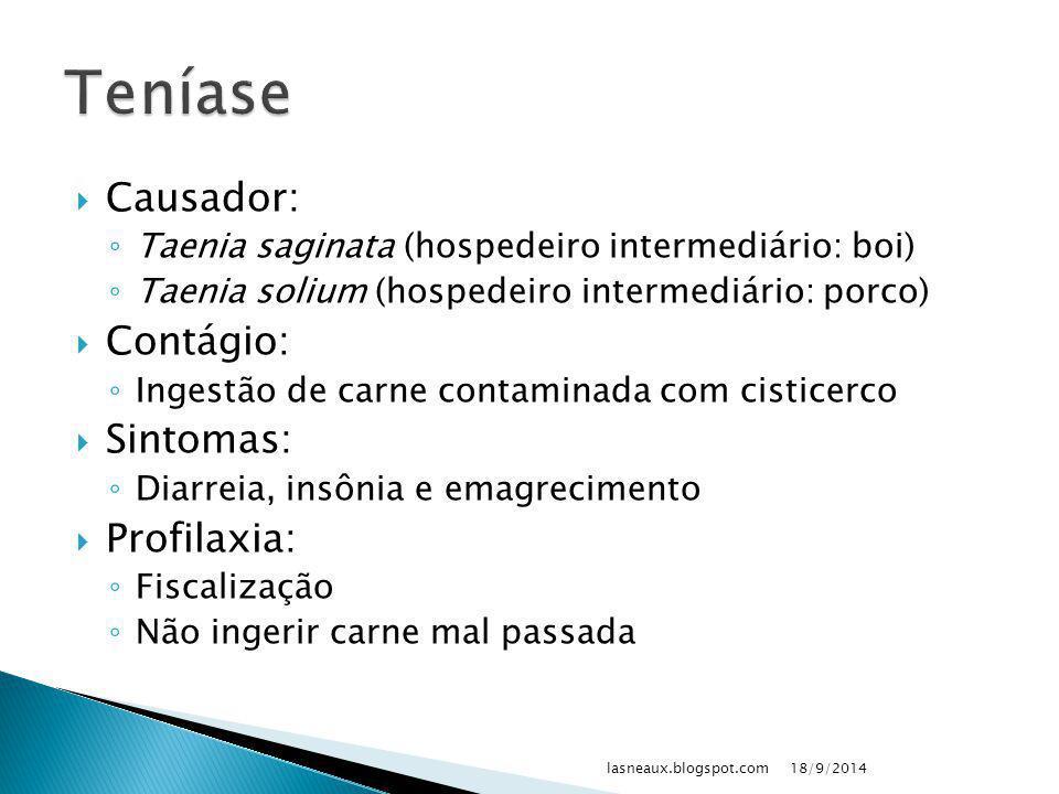 18/9/2014lasneaux.blogspot.com Proglótides: hermafrodita ovos