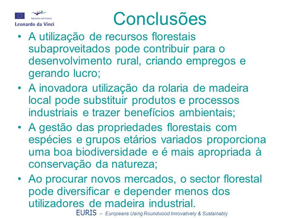 Conclusões A utilização de recursos florestais subaproveitados pode contribuir para o desenvolvimento rural, criando empregos e gerando lucro; A inova