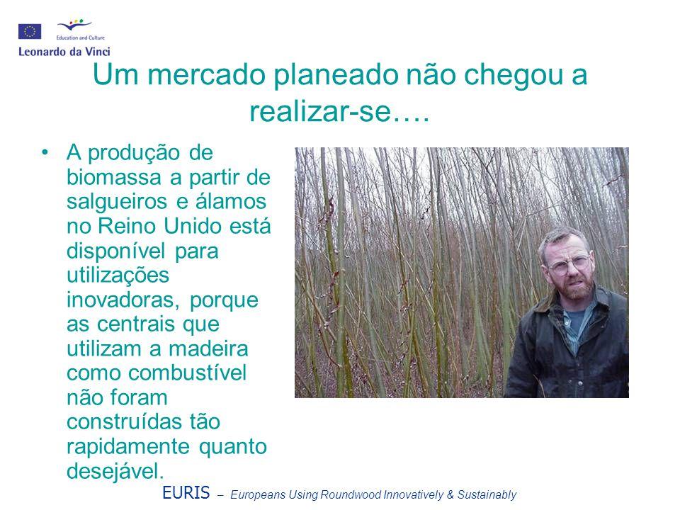 EURIS – Europeans Using Roundwood Innovatively & Sustainably Um mercado planeado não chegou a realizar-se…. A produção de biomassa a partir de salguei