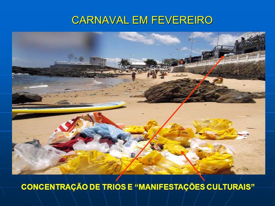 """CARNAVAL EM FEVEREIRO CONCENTRAÇÃO DE TRIOS E """"MANIFESTAÇÕES CULTURAIS"""""""