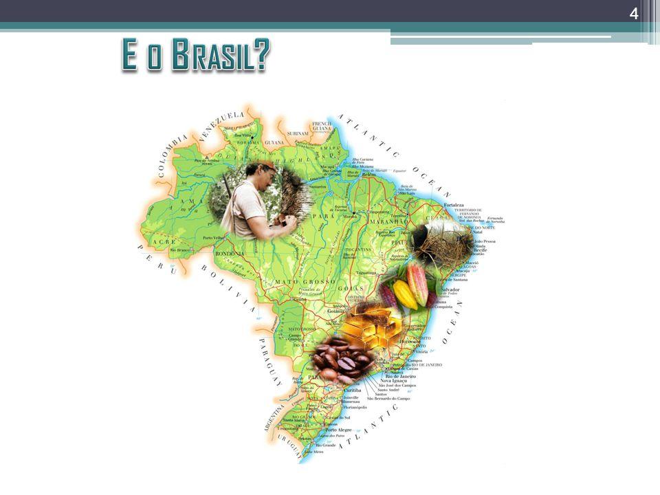 * Fonte: Silva, 2008 Produto Interno Bruto da Região Petrolifera Sergipana (RPS) 1970-2005 14