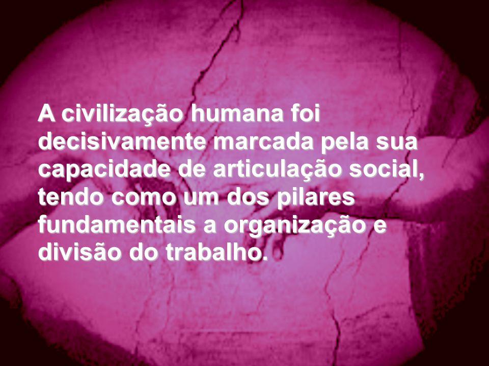 A civilização humana foi decisivamente marcada pela sua capacidade de articulação social, tendo como um dos pilares fundamentais a organização e divis