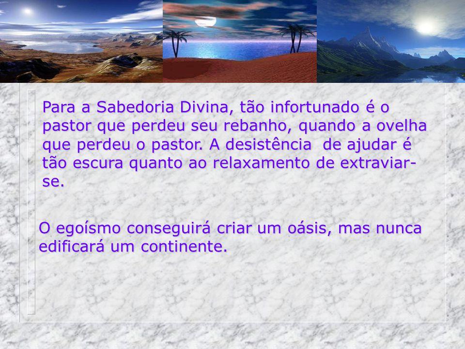 Para a Sabedoria Divina, tão infortunado é o pastor que perdeu seu rebanho, quando a ovelha que perdeu o pastor.