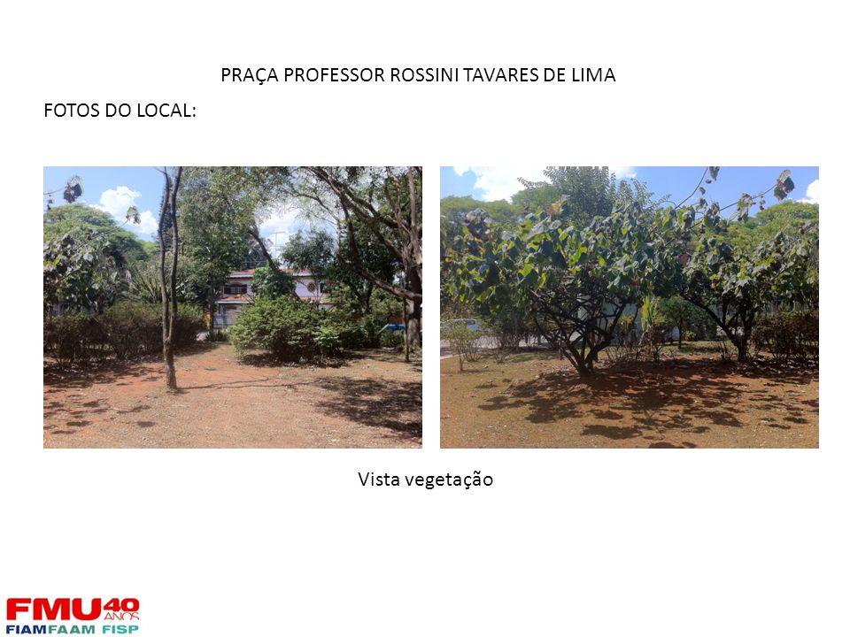 FOTOS DO LOCAL: Vista vegetação PRAÇA PROFESSOR ROSSINI TAVARES DE LIMA