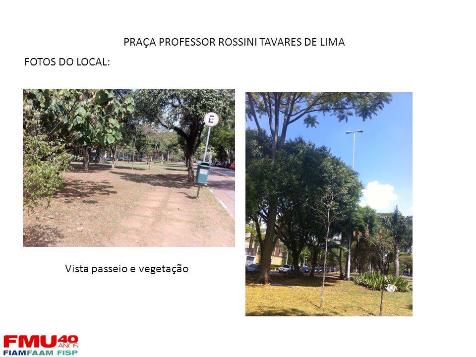 FOTOS DO LOCAL: Vista passeio e vegetação PRAÇA PROFESSOR ROSSINI TAVARES DE LIMA