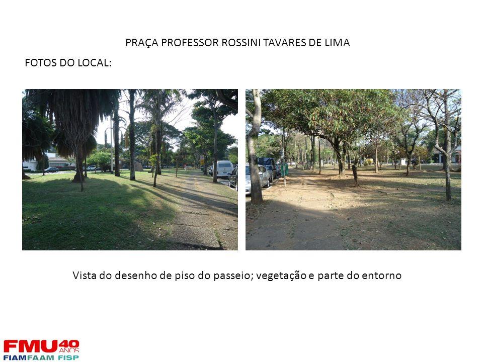 FOTOS DO LOCAL: Vista do desenho de piso do passeio; vegetação e parte do entorno PRAÇA PROFESSOR ROSSINI TAVARES DE LIMA