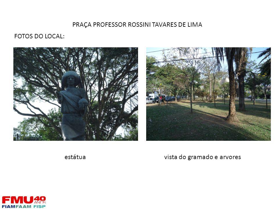 FOTOS DO LOCAL: estátuavista do gramado e arvores PRAÇA PROFESSOR ROSSINI TAVARES DE LIMA