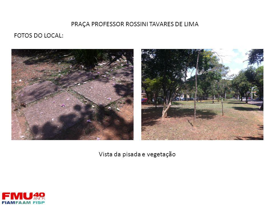 FOTOS DO LOCAL: Vista da pisada e vegetação PRAÇA PROFESSOR ROSSINI TAVARES DE LIMA