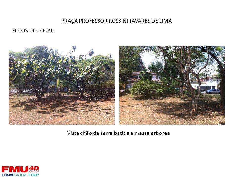 FOTOS DO LOCAL: Vista chão de terra batida e massa arborea PRAÇA PROFESSOR ROSSINI TAVARES DE LIMA