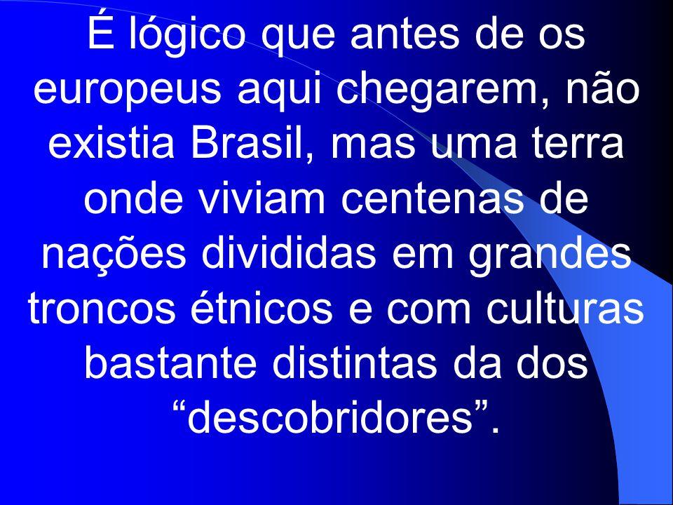 É lógico que antes de os europeus aqui chegarem, não existia Brasil, mas uma terra onde viviam centenas de nações divididas em grandes troncos étnicos