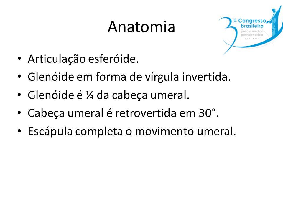 Anatomia Articulação esferóide. Glenóide em forma de vírgula invertida. Glenóide é ¼ da cabeça umeral. Cabeça umeral é retrovertida em 30°. Escápula c