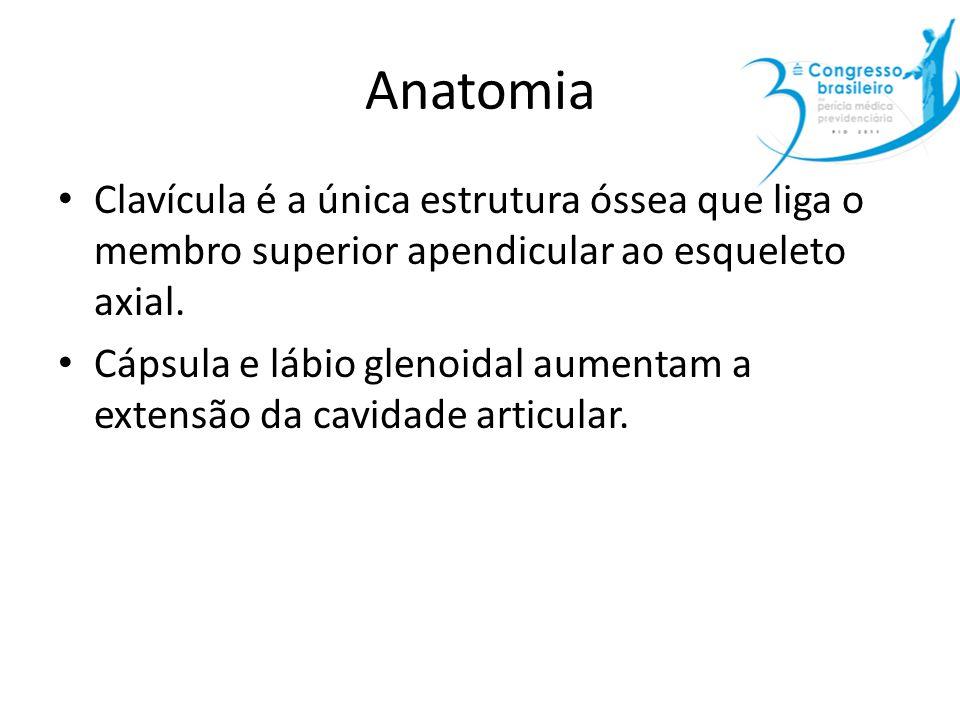 Anatomia Clavícula é a única estrutura óssea que liga o membro superior apendicular ao esqueleto axial. Cápsula e lábio glenoidal aumentam a extensão