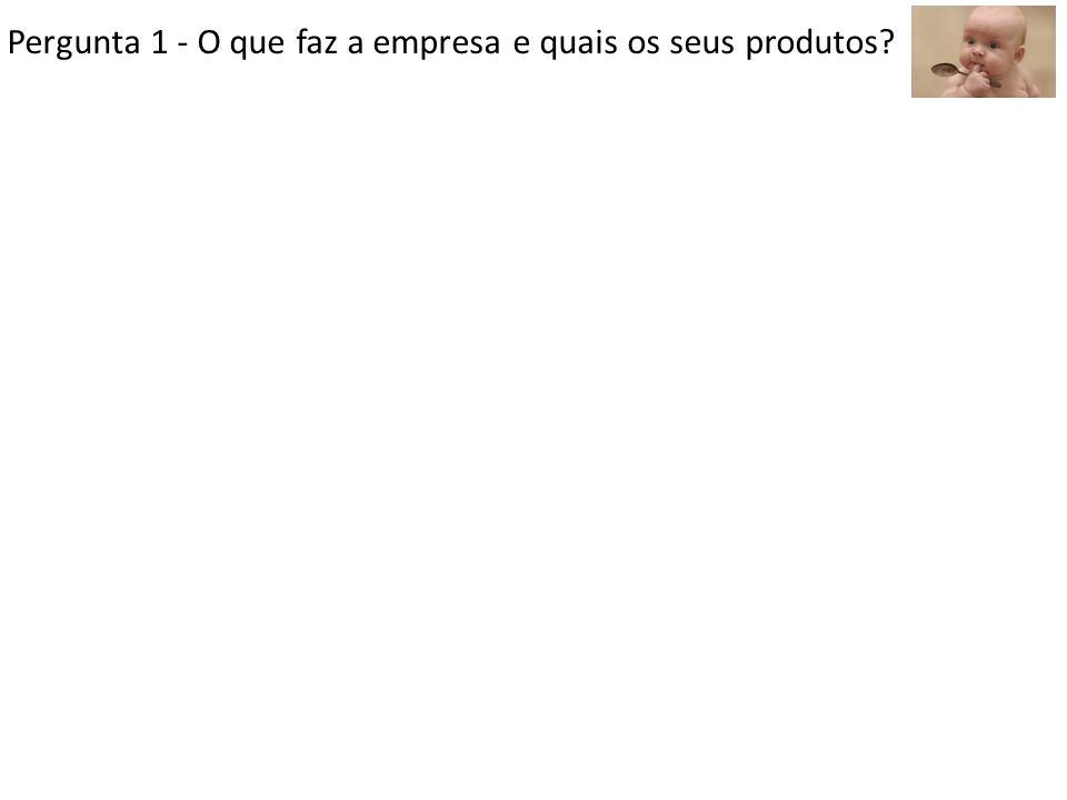 Pergunta 1 - O que faz a empresa e quais os seus produtos?