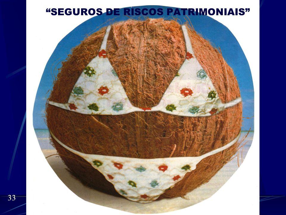 SEGUROS DE RISCOS PATRIMONIAIS Miguel Roberto Soares Silva 32 Usando a mesma retórica inicial eu vejo o mercado da seguinte forma:
