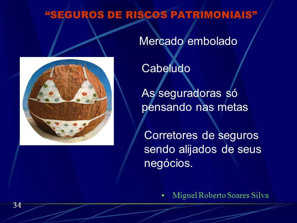 Miguel Roberto Soares Silva 33 SEGUROS DE RISCOS PATRIMONIAIS
