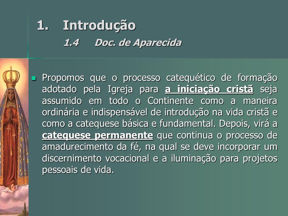 1.Introdução 1.4Doc. de Aparecida Propomos que o processo catequético de formação adotado pela Igreja para a iniciação cristã seja assumido em todo o