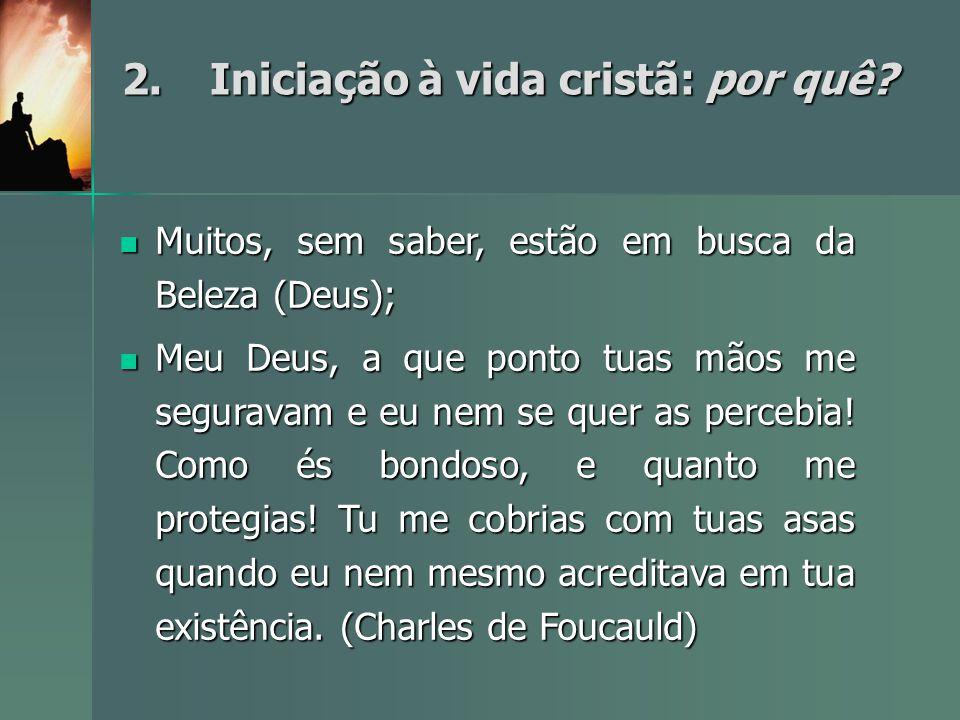 2.Iniciação à vida cristã: por quê? Muitos, sem saber, estão em busca da Beleza (Deus); Muitos, sem saber, estão em busca da Beleza (Deus); Meu Deus,