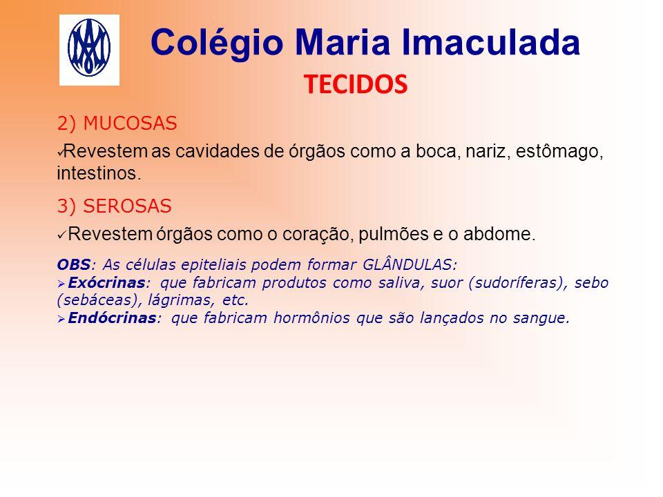 Colégio Maria Imaculada TECIDOS 2) MUCOSAS Revestem as cavidades de órgãos como a boca, nariz, estômago, intestinos. 3) SEROSAS Revestem órgãos como o
