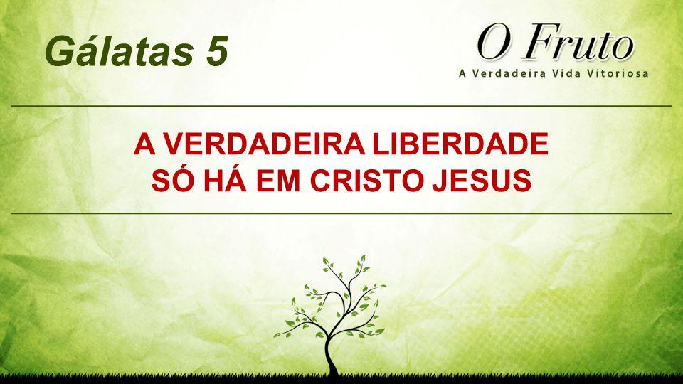 A VERDADEIRA LIBERDADE SÓ HÁ EM CRISTO JESUS Gálatas 5