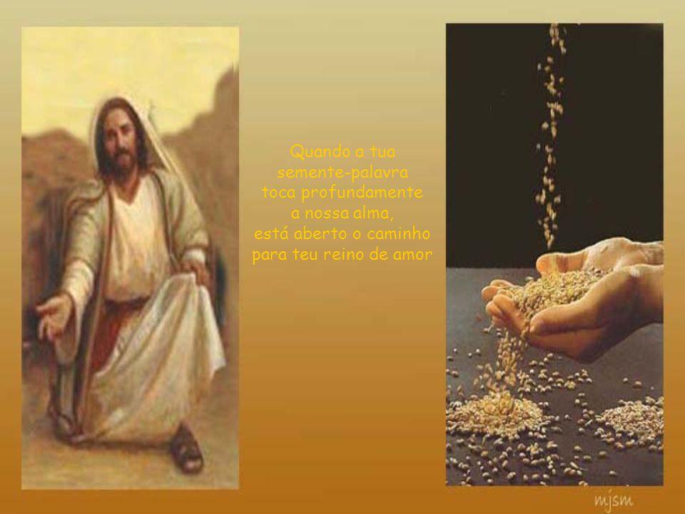 Quando a tua semente-palavra toca profundamente a nossa alma, está aberto o caminho para teu reino de amor