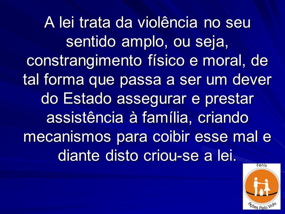 A lei trata da violência no seu sentido amplo, ou seja, constrangimento físico e moral, de tal forma que passa a ser um dever do Estado assegurar e pr