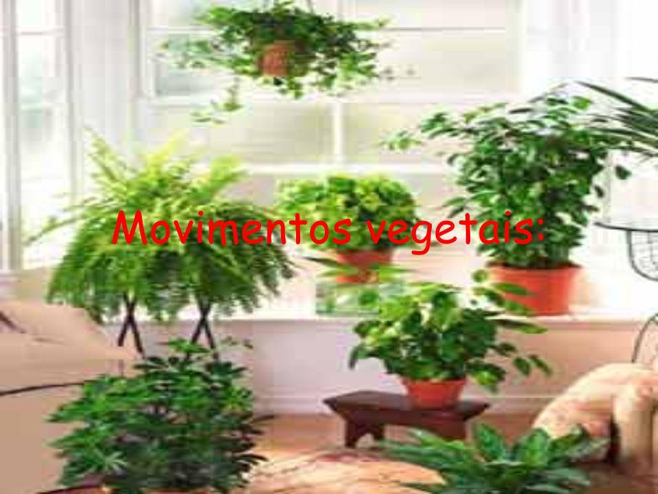 Movimentos vegetais: