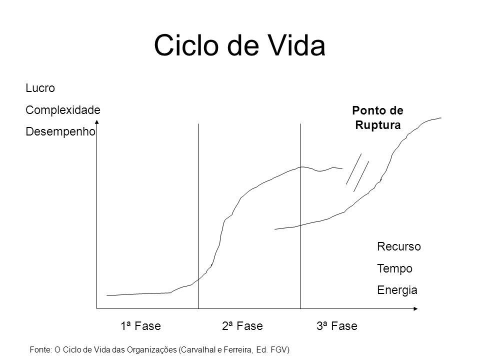 Ciclo de Vida 1ª Fase2ª Fase3ª Fase Ponto de Ruptura Lucro Complexidade Desempenho Recurso Tempo Energia Fonte: O Ciclo de Vida das Organizações (Carvalhal e Ferreira, Ed.