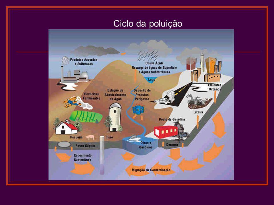 Ciclo da poluição