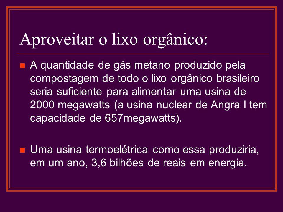 Aproveitar o lixo orgânico: A quantidade de gás metano produzido pela compostagem de todo o lixo orgânico brasileiro seria suficiente para alimentar uma usina de 2000 megawatts (a usina nuclear de Angra I tem capacidade de 657megawatts).