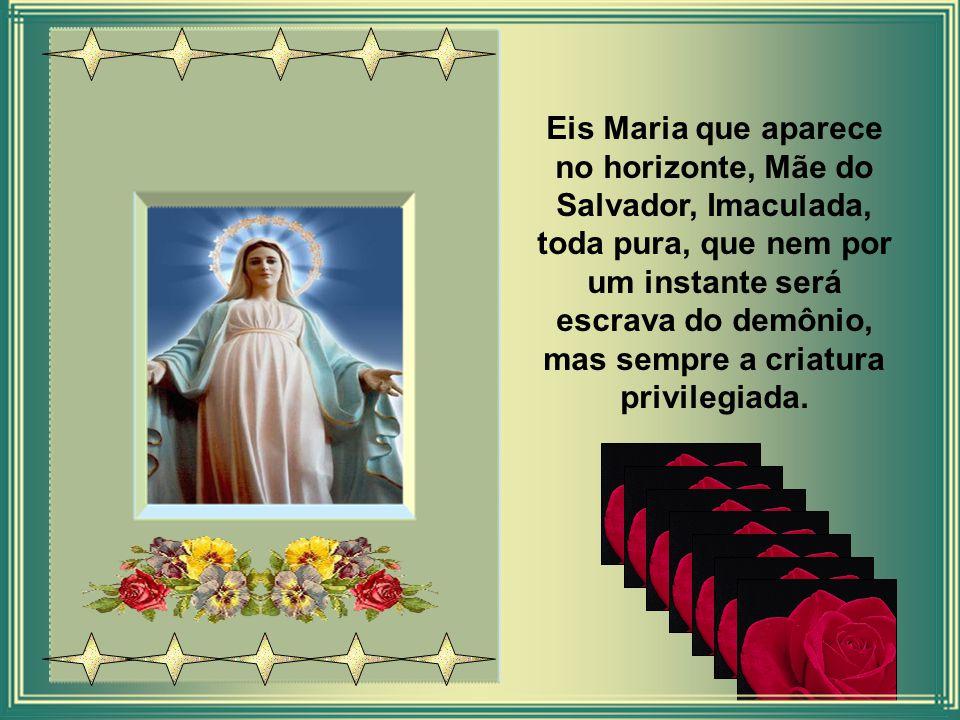 Eis Maria que aparece no horizonte, Mãe do Salvador, Imaculada, toda pura, que nem por um instante será escrava do demônio, mas sempre a criatura privilegiada.