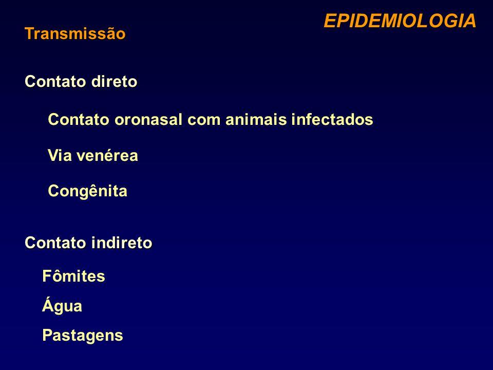 Contato indireto Contato direto EPIDEMIOLOGIA EPIDEMIOLOGIA Transmissão Contato oronasal com animais infectados Via venérea Congênita Fômites Água Pas