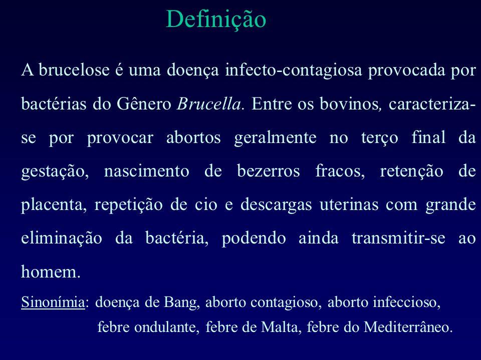 Definição A brucelose é uma doença infecto-contagiosa provocada por bactérias do Gênero Brucella. Entre os bovinos, caracteriza- se por provocar abort