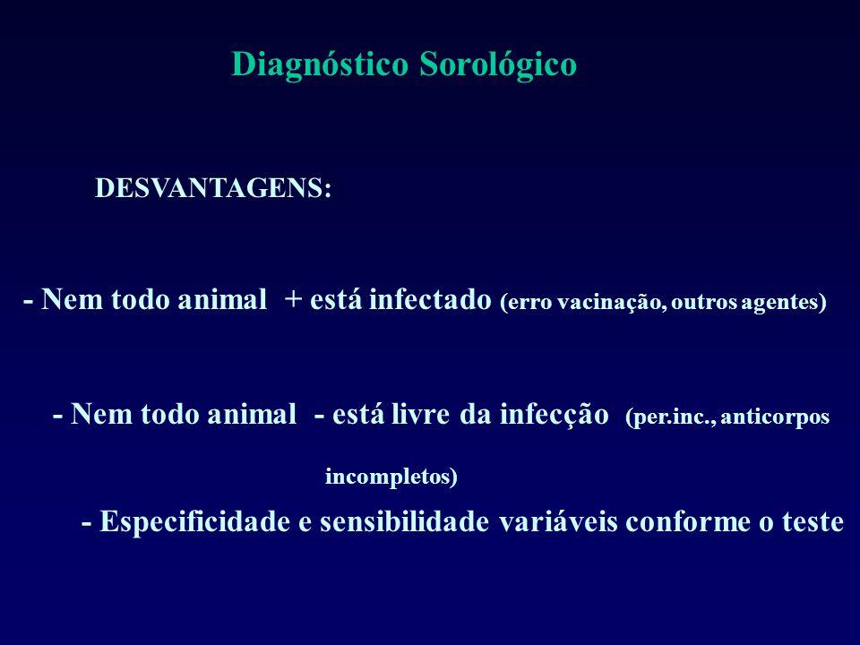 DESVANTAGENS: - Nem todo animal - está livre da infecção (per.inc., anticorpos incompletos) - Nem todo animal + está infectado (erro vacinação, outros agentes) - Especificidade e sensibilidade variáveis conforme o teste Diagnóstico Sorológico