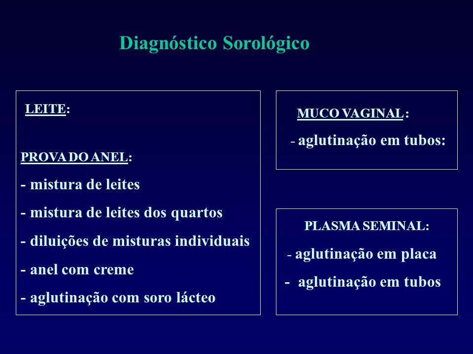 Diagnóstico Sorológico LEITE: PROVA DO ANEL: - mistura de leites - mistura de leites dos quartos - diluições de misturas individuais - anel com creme - aglutinação com soro lácteo MUCO VAGINAL : - aglutinação em tubos: PLASMA SEMINAL: - aglutinação em placa - aglutinação em tubos