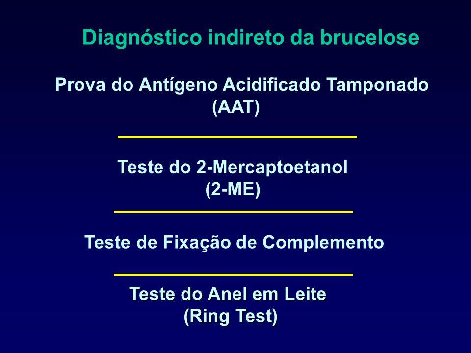 Diagnóstico indireto da brucelose Teste do Anel em Leite (Ring Test) Prova do Antígeno Acidificado Tamponado (AAT) Teste do 2-Mercaptoetanol (2-ME) Teste de Fixação de Complemento