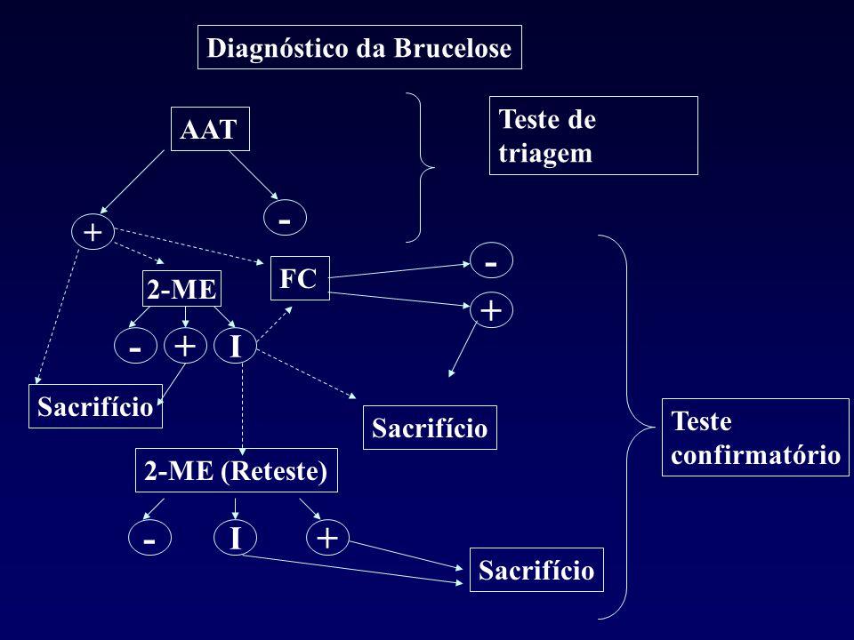 AAT + Diagnóstico da Brucelose - Teste de triagem Sacrifício 2-ME FC I +- - + Sacrifício 2-ME (Reteste) I +- Sacrifício Teste confirmatório