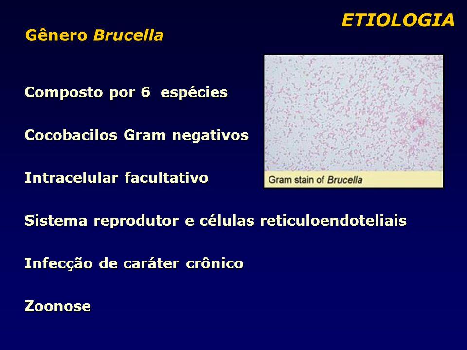 Composto por 6 espécies Cocobacilos Gram negativos Intracelular facultativo Sistema reprodutor e células reticuloendoteliais Infecção de caráter crônico Zoonose ETIOLOGIA ETIOLOGIA Gênero Brucella