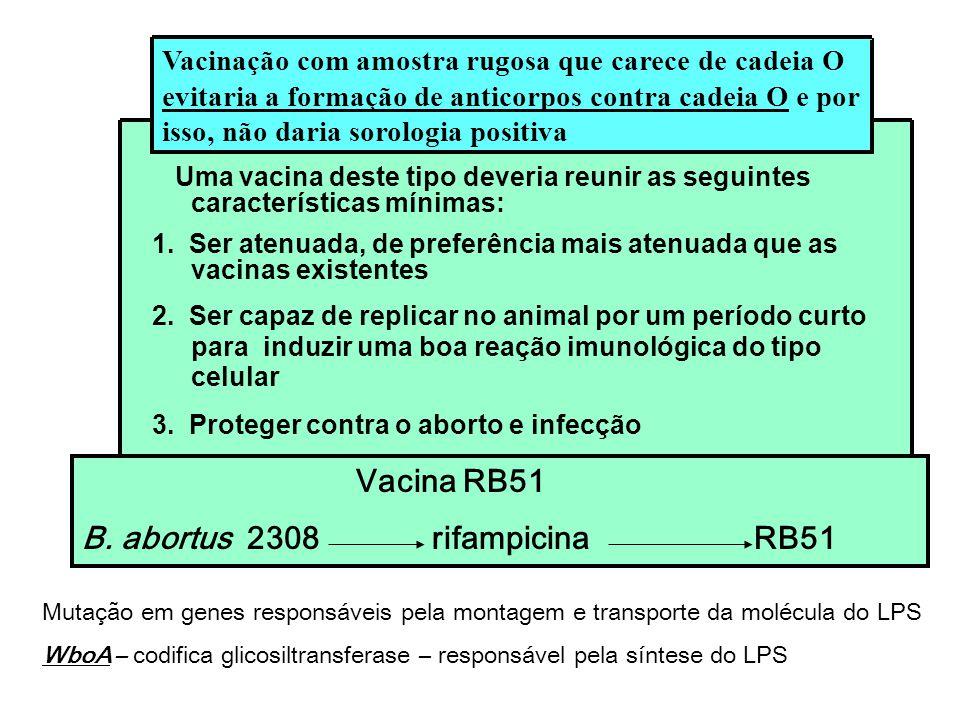 Uma vacina deste tipo deveria reunir as seguintes características mínimas: 1. Ser atenuada, de preferência mais atenuada que as vacinas existentes 2.