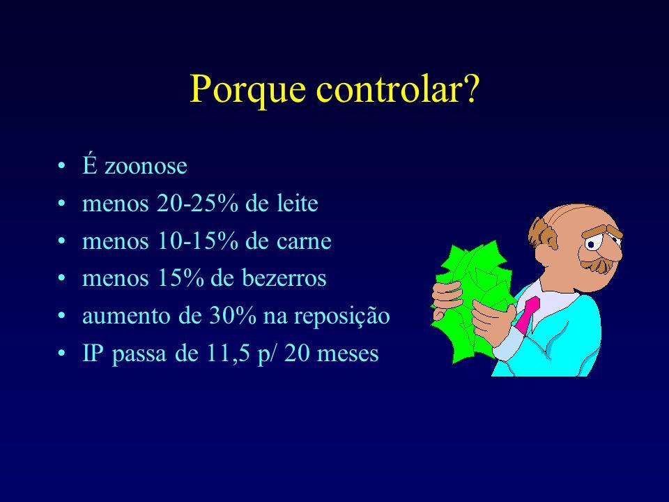 Porque controlar? É zoonose menos 20-25% de leite menos 10-15% de carne menos 15% de bezerros aumento de 30% na reposição IP passa de 11,5 p/ 20 meses