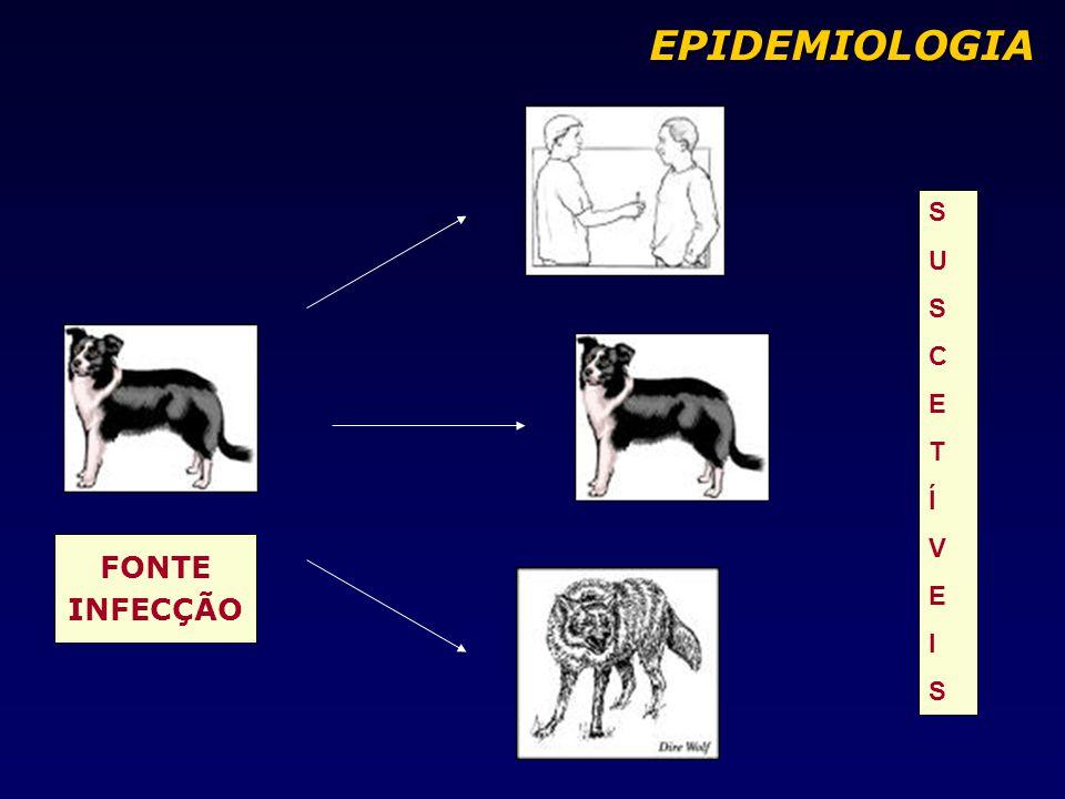FONTE INFECÇÃO SUSCETÍVEISSUSCETÍVEIS EPIDEMIOLOGIA EPIDEMIOLOGIA