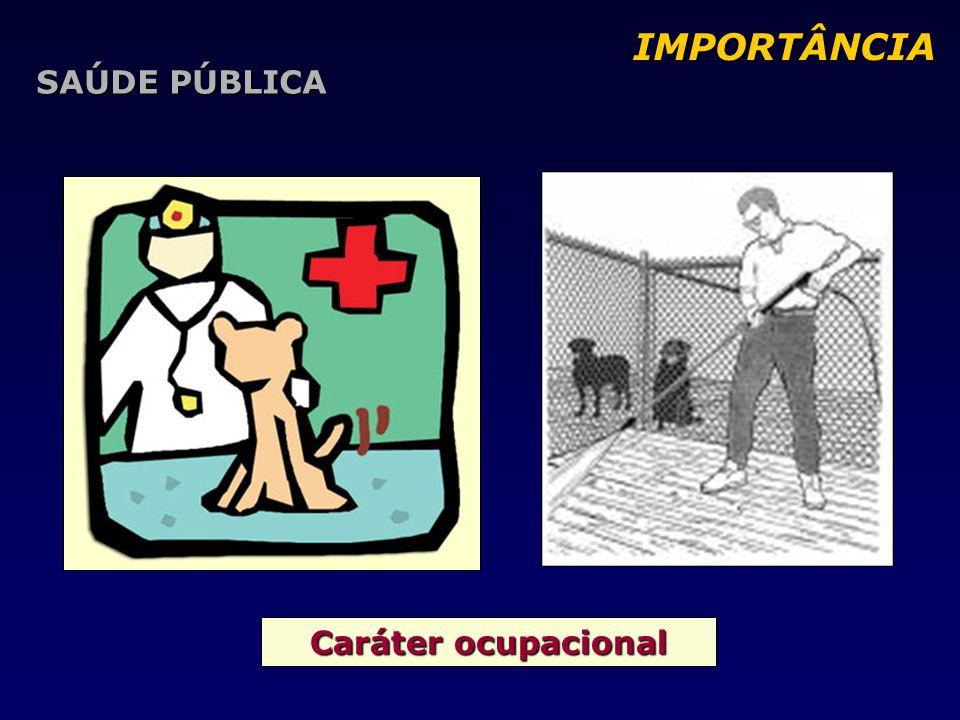 Caráter ocupacional IMPORTÂNCIA IMPORTÂNCIA SAÚDE PÚBLICA