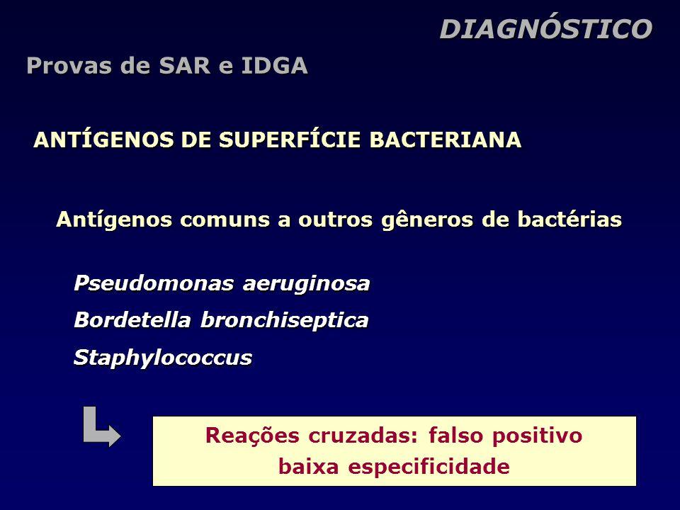 Antígenos comuns a outros gêneros de bactérias DIAGNÓSTICO DIAGNÓSTICO ANTÍGENOS DE SUPERFÍCIE BACTERIANA Pseudomonas aeruginosa Bordetella bronchiseptica Staphylococcus Reações cruzadas: falso positivo baixa especificidade Provas de SAR e IDGA