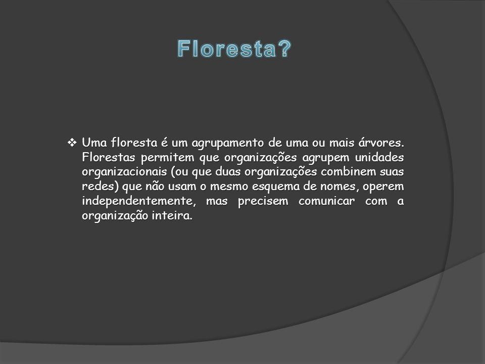  Uma floresta é um agrupamento de uma ou mais árvores.